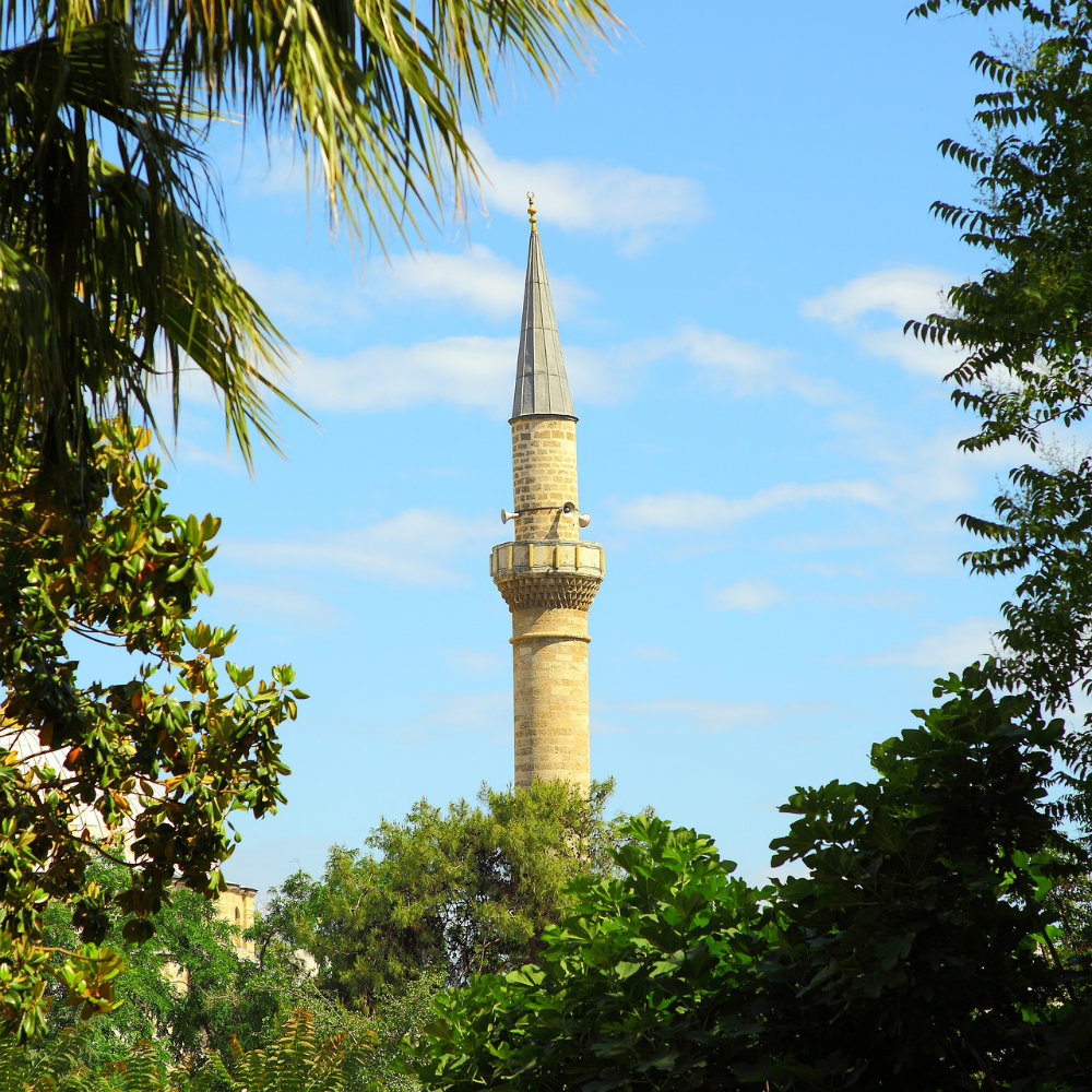 Cami Turm