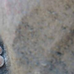 Ausprobiert: Bouldern im TUI BLUE