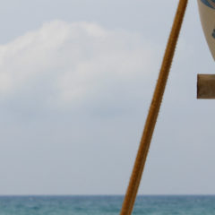 Windsurfing, the latest sports craze: Intro courses at TUI BLUE