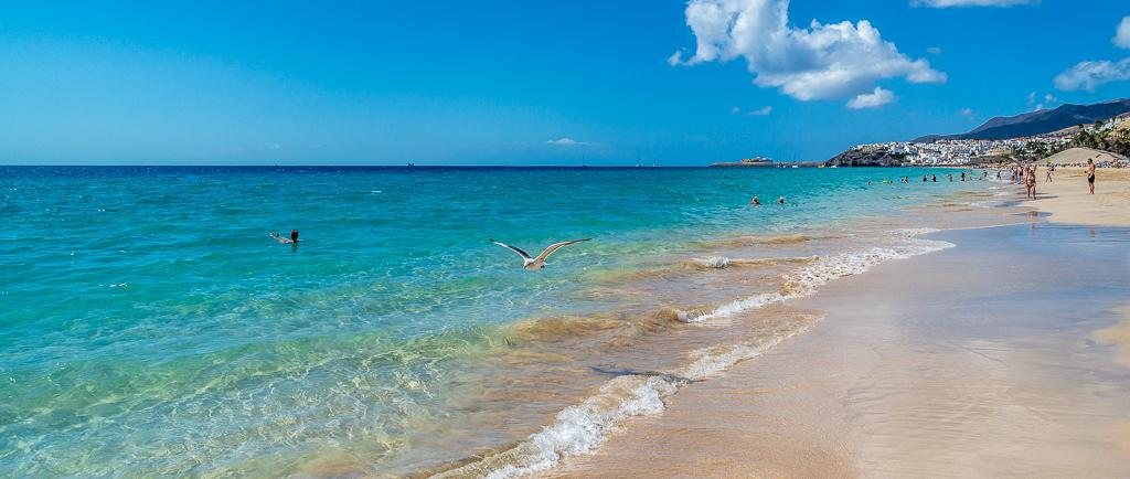 Fuerteventura: Nicht nur der Strand von Matorral ist traumhaft