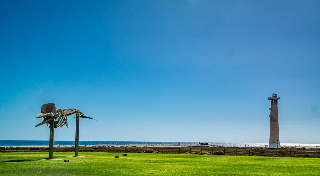 Ostküste Fuerteventura: Das Walfischskelett ist unser erster Stop