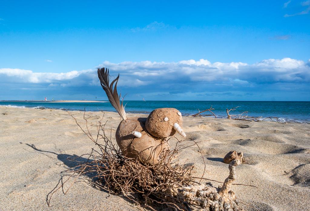 Fuerteventura: Kreative Verwendung von Strandgut