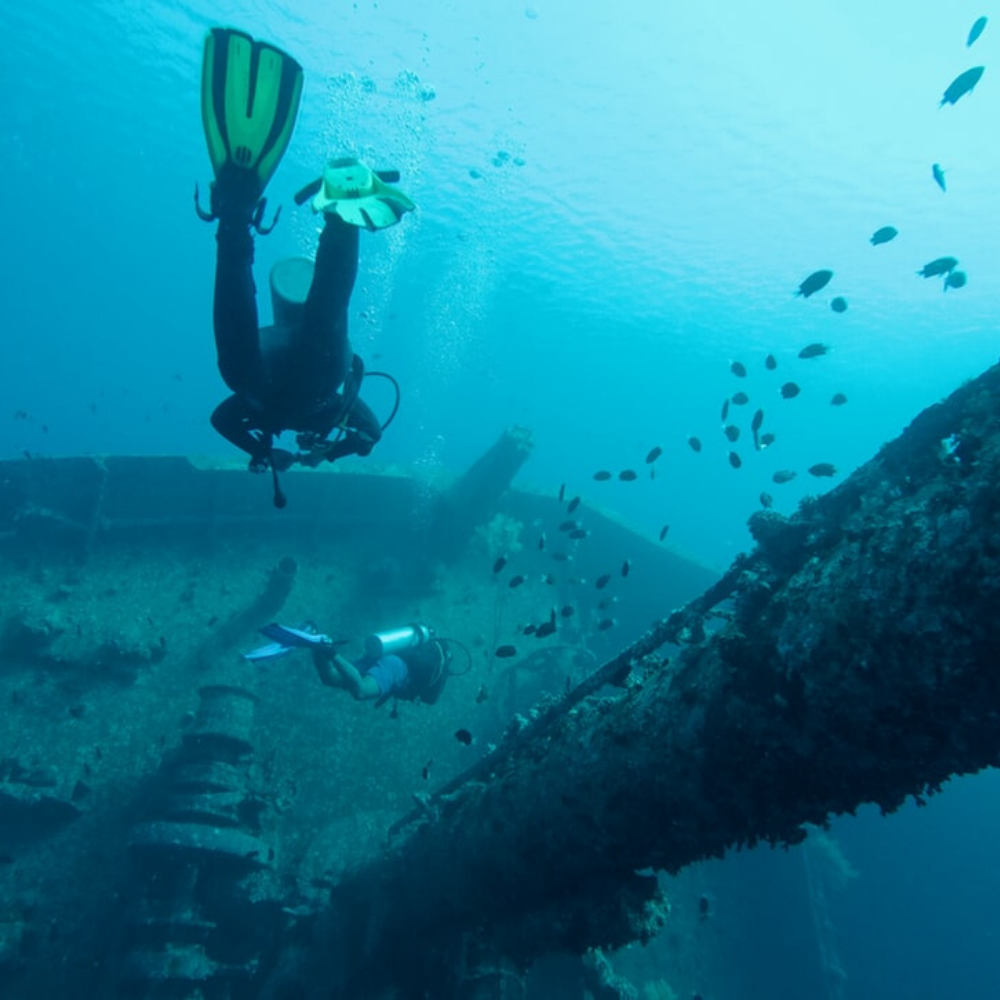 Shipwrecks in Abu Nuha diving areas in Egypt TUI BLUE Blog