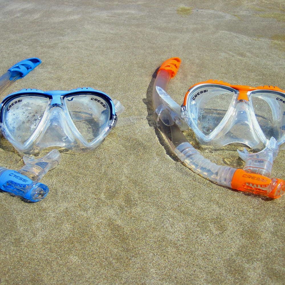 Snorkel Equipment Red Sea Diving Areas in Egypt TUI BLUE Blog