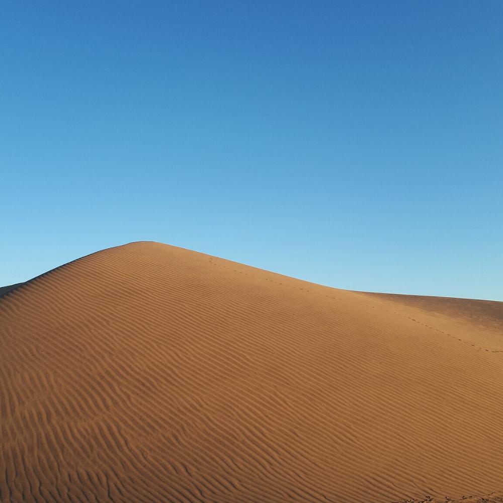 Holiday Canary Islands Dunes of Maspalomas Gran Canaria