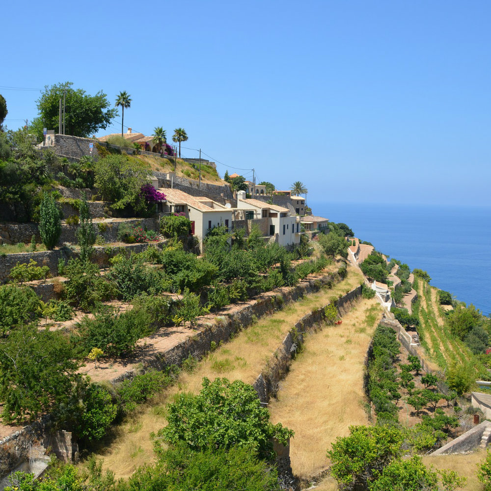 Banyalbufa mallorca terrassenförmig
