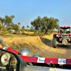 Dune buggy tour: Off-road adventures on Djerba