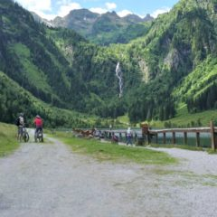 Full Throttle on Two Wheels: E-Bike Tour in the Alps