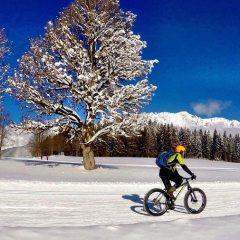 Auf breiten Reifen: Mit dem Fatbike in den Alpen