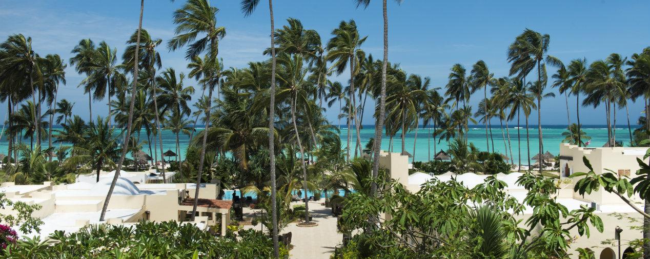 tui blue zanzibar beach palm trees sea
