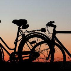 Die 3 schönsten Radtouren an der Mecklenburgischen Seenplatte