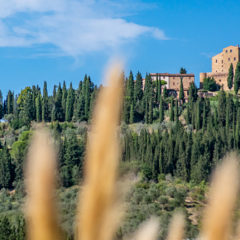 Castelfalfi: Sustainable holidays in Tuscany