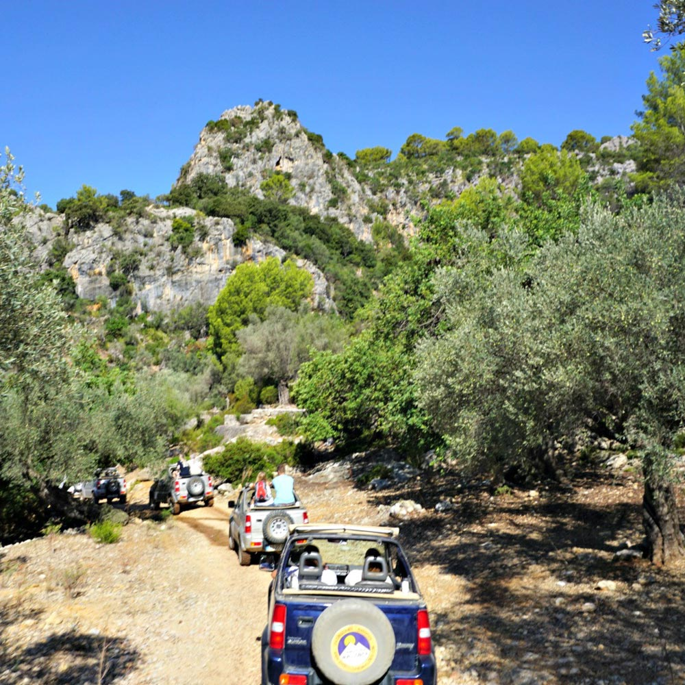 jeep safari natur mallorca