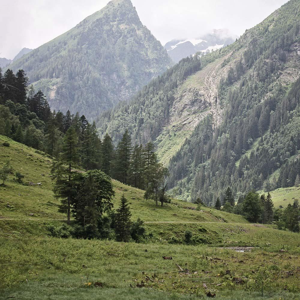 landschaft oesterreich