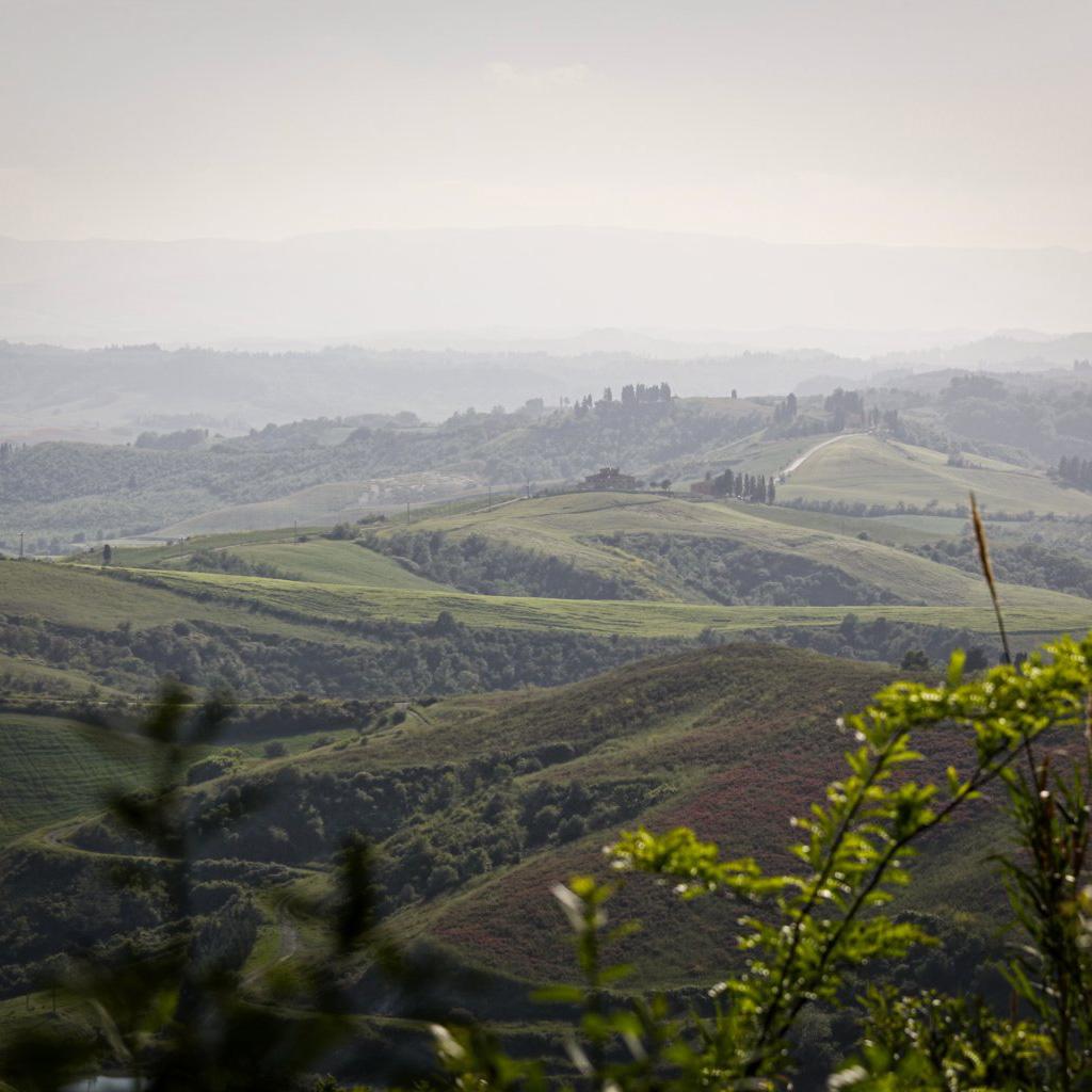 landschaft panaroma castelfalfi