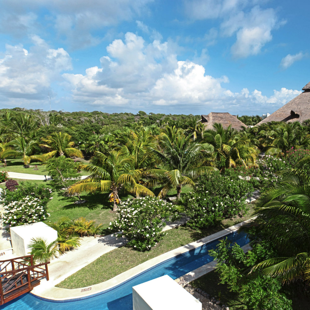 Palm garden el Dorado