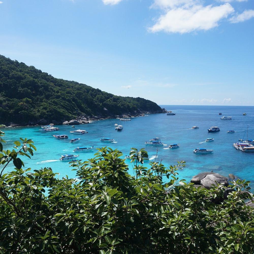 Wasser Boot Berge Strand Pflanzen Thailand