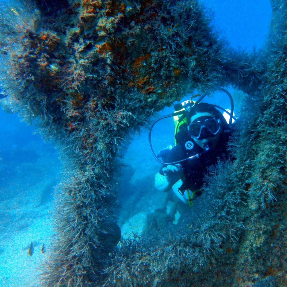diving in Tunisia diver