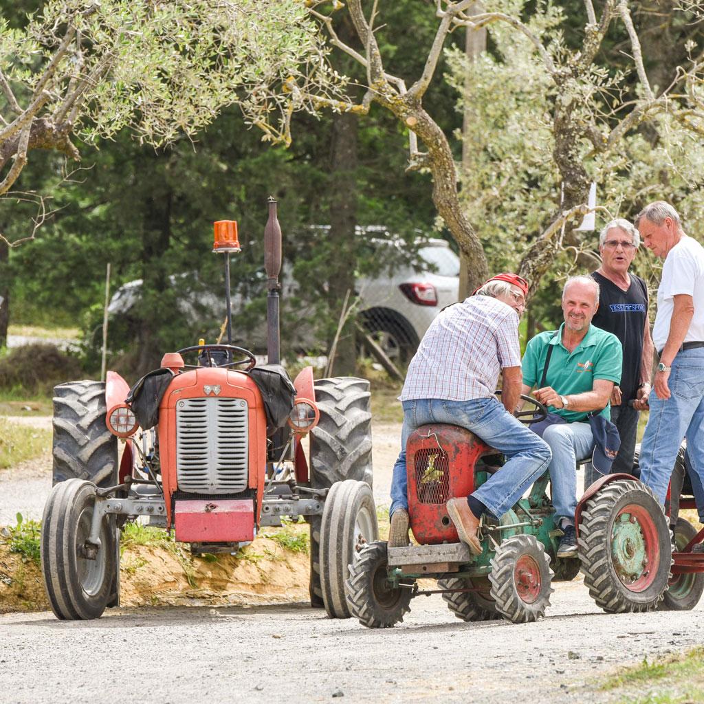 traktoren castelfalfi