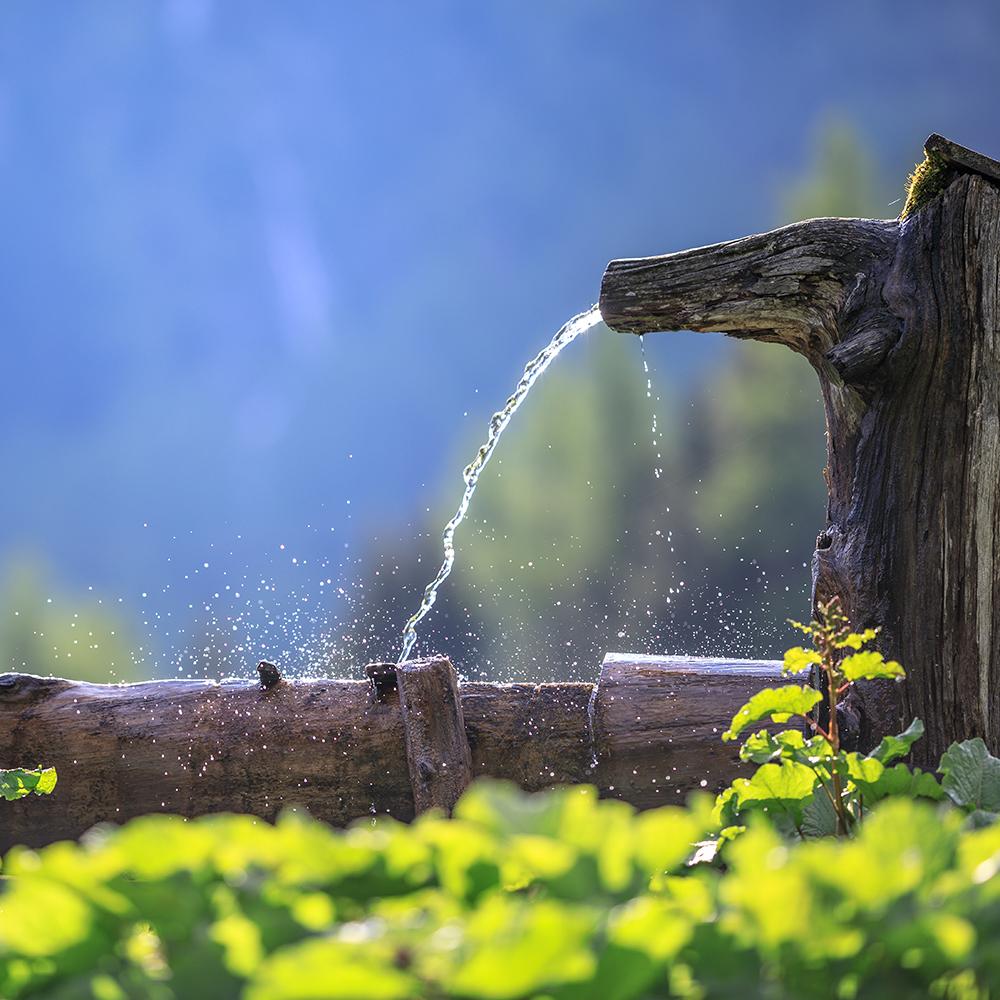 Frisches Wasser auf der Alm