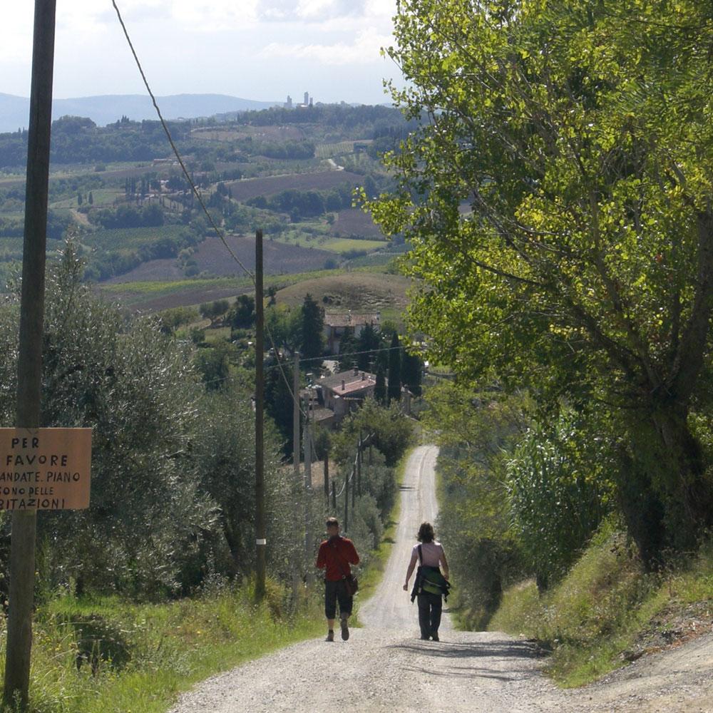 Wanderung San Gimignano Toskana