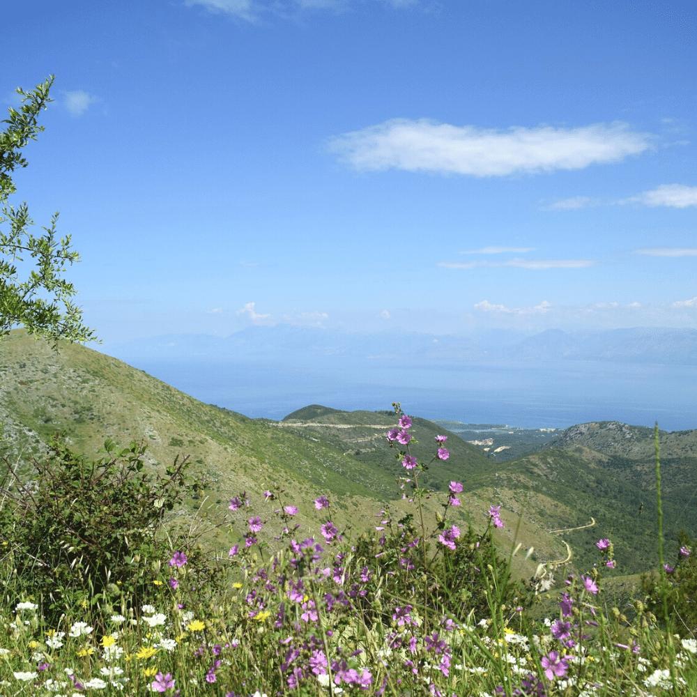 Weg zum Pantokrator Korfu