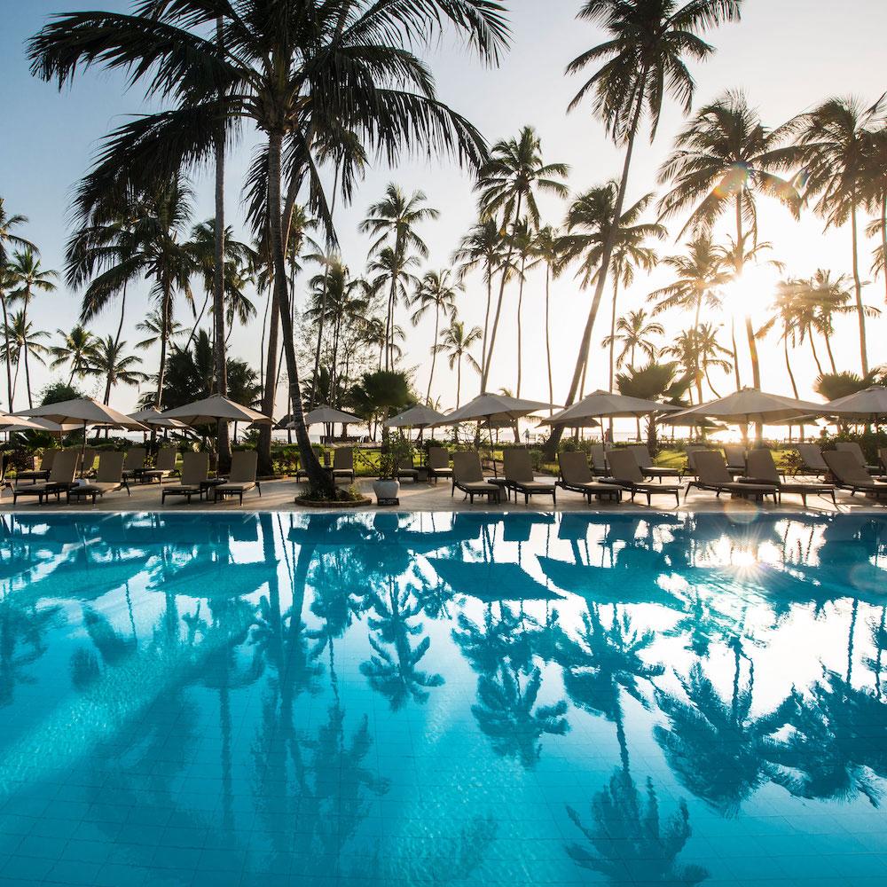 pool palmen sonne
